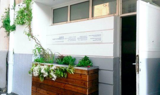 Jardiniere urbaine centre d'urgence