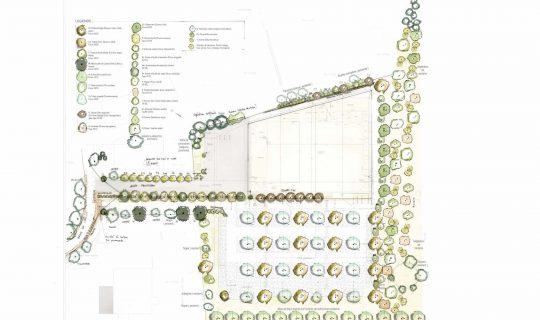 Plan masse après consultation de l'architecte du parc