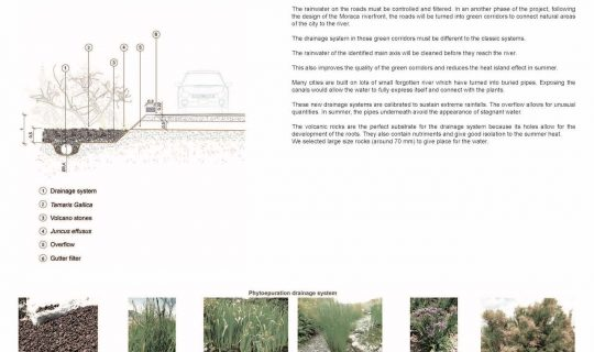 Système de filtration des eaux pluviales